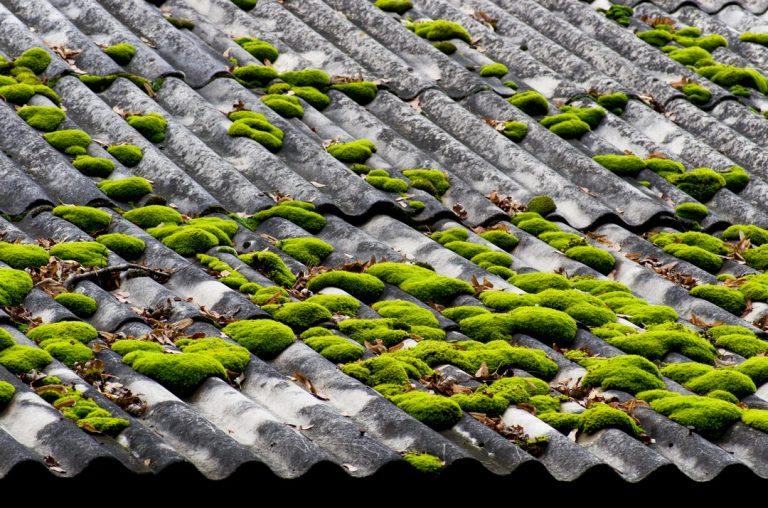 changement toit
